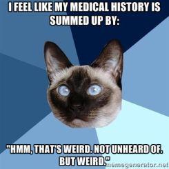 Cat Medical Meme